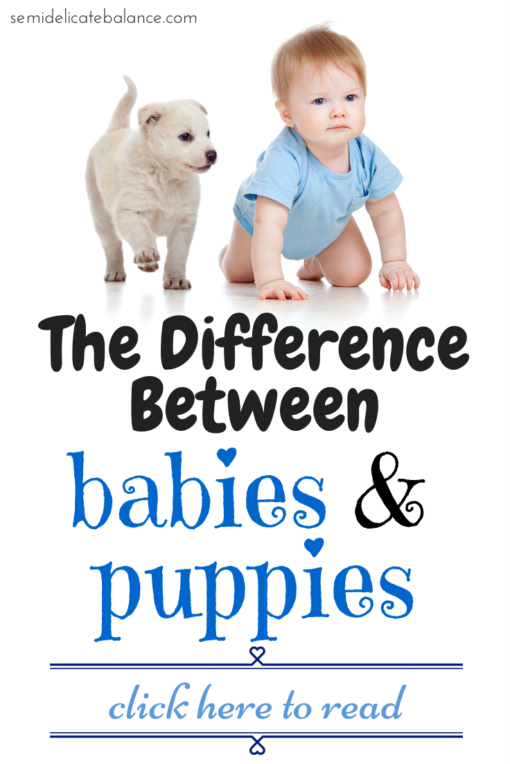 The Difference Between Babies and Puppies