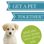Should you get a pet together?