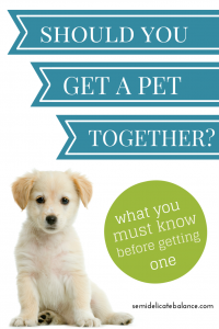 Should you get a pet together?