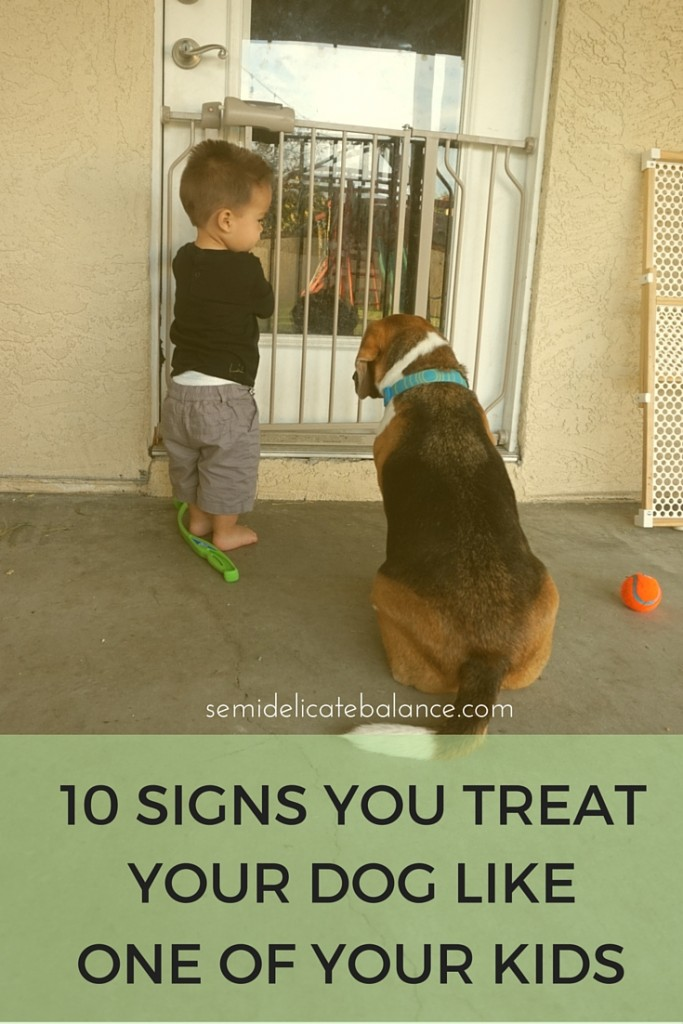 10 Signs You Treat Your Dog Like One of Your Kids