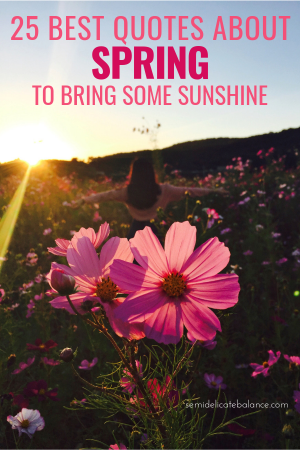 25 Best Quotes About Spring To Bring Some Sunshine To Your Life #springquotes #springcaptions #quoteaboutspring #springtime