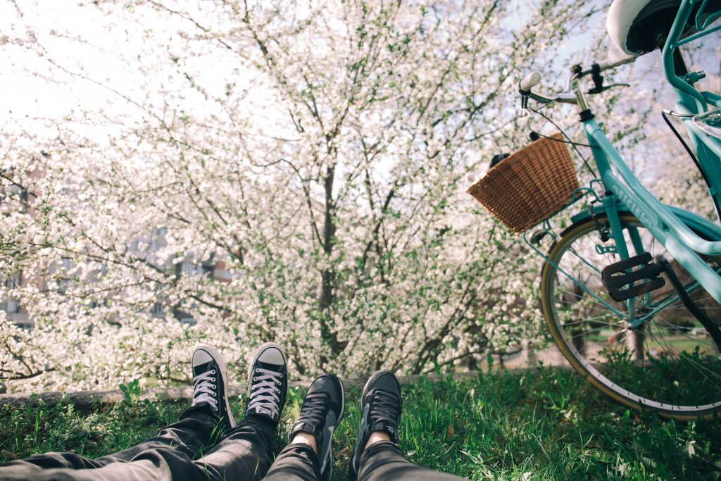 25 Best Quotes About Spring To Bring Some Sunshine To Your Life
